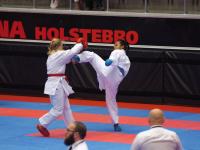 Holstebro-268